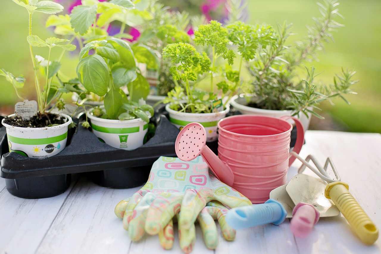 supplies for planting a herb garden